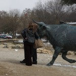 Photos with the bronze cattle