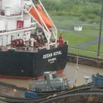 Turkish grain freighter 2