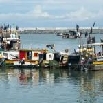Boats at the market